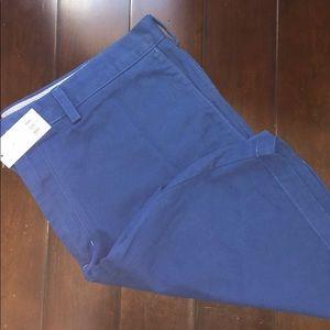 NWT Banana Republic Blue Shorts